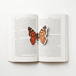 The butterfly bookmark