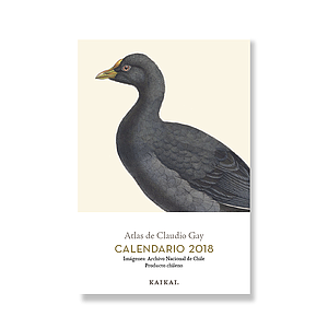 Calendario postal Claudio Gay
